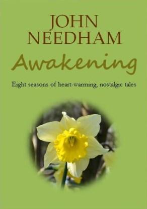 Capture Awakening cover